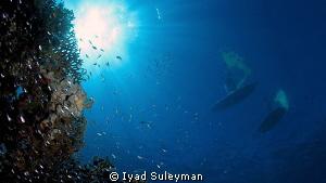 Surfers by Iyad Suleyman