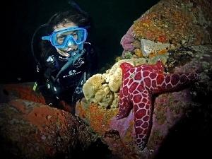 Shirley and Mosaic Star. Kurnell, Botany Bay. by Doug Anderson