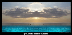 the wings of freedom  translation saying: sensless and... by Claudia Weber-Gebert