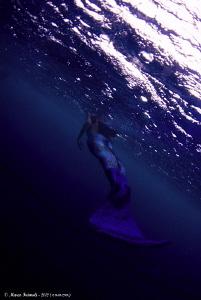 Blu mermaid by Marco Faimali (ismar-Cnr)