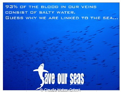 93% of our blood consists of saltwater by Claudia Weber-Gebert