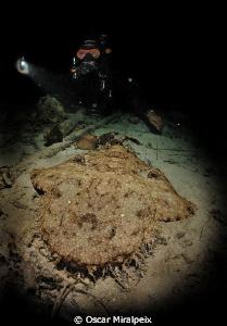 Nightdive in Raja Ampat by Oscar Miralpeix