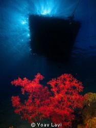 Under the raft double exposure by Yoav Lavi