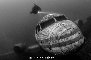 Diver checking out the passenger plane by Elaine White