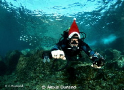 Xmas diving! by Alexia Dunand