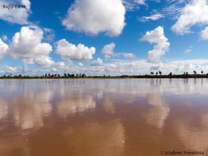 Rufiji River. by Stéphane Primatesta