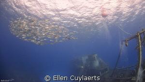 Jacks at the Ex-USS Kittiwake by Ellen Cuylaerts