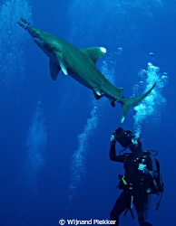 German videographer with Oceanic by Wijnand Plekker