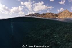 Desert & Sea by Oxana Kamenskaya