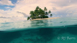 Taken at Shark island in Truk(Chuuk) Lagoon, with the bla... by Aj Barrs