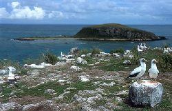 Abrolhos National Marine Park - Bahia - Brazil by Eduardo Lima