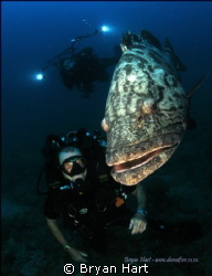 Went to Sodwana to try out re- breathers. Fish love photo... by Bryan Hart