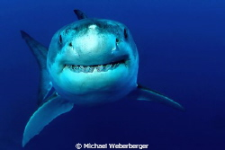 Keep smiling !!! by Michael Weberberger