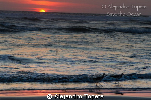Sunset in Acapulco, Mexico by Alejandro Topete