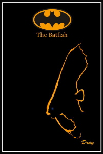 The Batfish by Dray Van Beeck