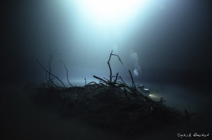 Cenote Angelita by Cyril Buchet