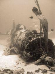 Corsair, ~110' deep, south shore Oahu Hawaii. by Glenn Poulain