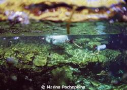 trash the dress into cenote, Mexico by Marina Pochepkina