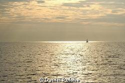 Sailing Bronze Sea by Daniel Poloha