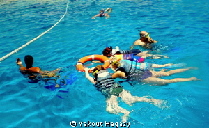 Learn surface diving(SHARM el-shiekh by Yakout Hegazy