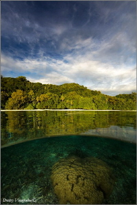 Palau by Dmitry Vinogradov