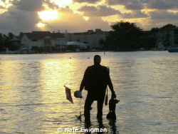 Dive buddy at sunrise, Blue Heron Bridge, West Palm Beach... by Nate Ewigman