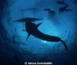 Can you imagine! by Azman Kamaluddin