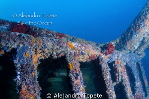 Colorfull wreck, La Paz Mexico by Alejandro Topete