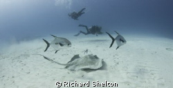 Dive Cozemel.  A boat dive in Cozumel,Mexico  