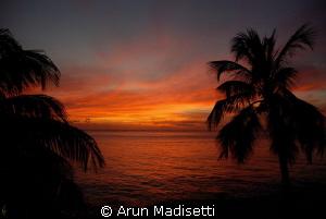 backyard sunset.... 02.03.13 by Arun Madisetti