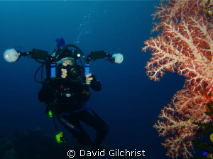 The Underwater Photographer, Sony Rx 100, Nauticam Housing by David Gilchrist