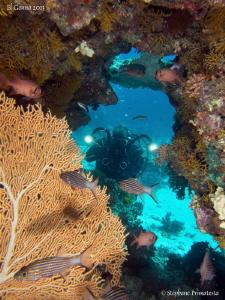Red Sea atmosphere. by Stéphane Primatesta