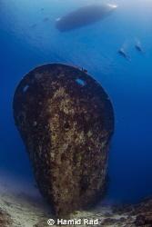 Morning dive on Kuda Giri wreck, south Male atoll / Natur... by Hamid Rad