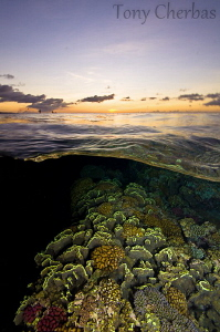 Sunset at Reef's Edge by Tony Cherbas