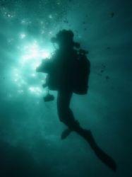 Night Diving - Sharks Cove North Shore Oahu Hawaii by Glenn Poulain