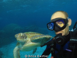 selfshot with a green turtle + bonus reflection in my mas... by Brice Bastier