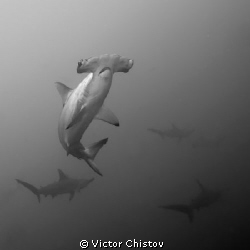 Rendez-vous.