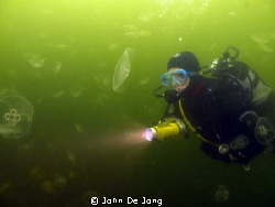 Nathalie between the jellyfish at lake Grevelingen, the N... by John De Jong