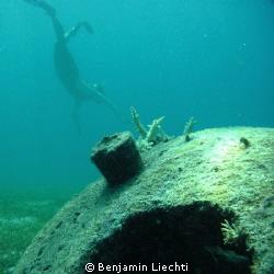 Woman snorkeling between concrete structures that serve a... by Benjamin Liechti