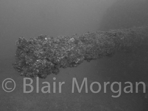 The business end of a 5 inch gun on the exHMAS Brisbane by Blair Morgan