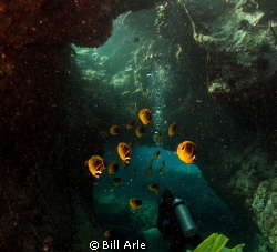 Some back-scatter, due to direction of the swell during t... by Bill Arle