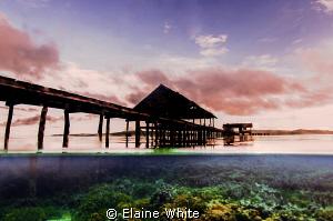Pier at Kri Eco Resort, Raja Ampat by Elaine White