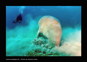 Dougong with Diver by Henrik Gram Rasmussen
