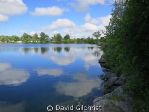 View of a popular Quarry diving site near Lake Erie-Windm... by David Gilchrist