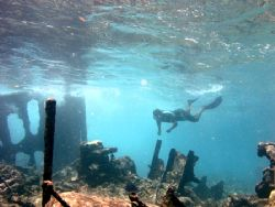 Snorkeling a wreck in the shallows of The Southern Belize... by Martin Spragg