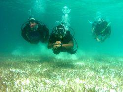 Three divemaster candidates practicing their underwater n... by Martin Spragg
