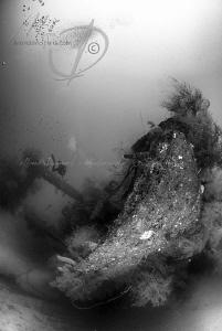 GILI RAJA WRECK a beautiful wreck near Donggala (West Su... by Mona Dienhart