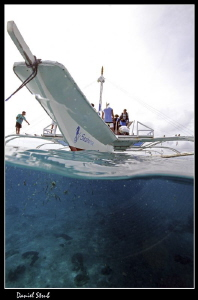 A diving trip to Sumilon Island, Cebu, Philipines. The ty... by Daniel Strub