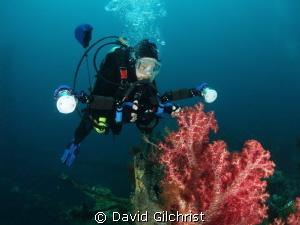 Underwater Photographer, Truk Lagoon by David Gilchrist