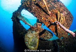 Propeller of the Wilma Hooker wreck in Bonaire by Marteyne Van Well